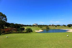 ゴルフ場、基本動作、スイング、マネジメント